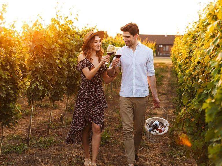 Exploring Wine in the U.S.